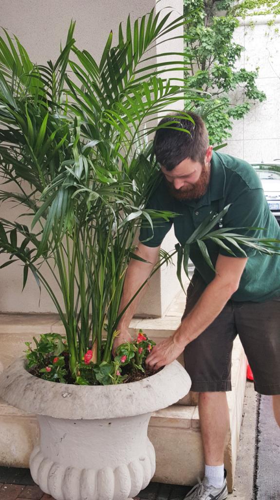 Leif Planting